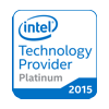 In 1998, ION became the first company in the world to qualify as an Intel Authorized Solution Provider, the program now known as Intel Technology Partner Platinum.